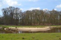 Sandbankbereich nahe Fluss Regge Lizenzfreie Stockbilder