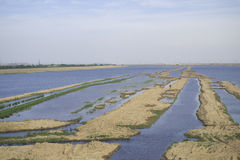 Sandbanks im Fluss Lizenzfreies Stockbild