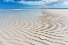 Sandbar i piaska dolar czochry i Textured piasek, obrazy stock