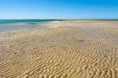 Sandbar in Monkey Mia. Western Australia stock photography