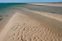 Sandbar in Monkey Mia. Western Australia royalty free stock photography