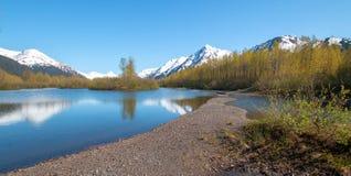 Sandbar och kust på älglägenhetvåtmark och Portage liten vik i den Turnagain armen nära ankringen Alaska USA royaltyfri bild