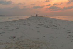 The Sandbar at Sunset. Royalty Free Stock Photo