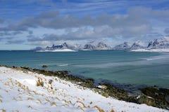 Sandbotnenlandschap in Lofoten-Archipel royalty-vrije stock afbeeldingen