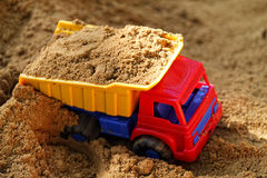 In the sandbox Royalty Free Stock Image