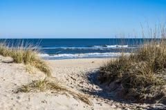 Sandbridge海滩在弗吉尼亚海滩,有草的弗吉尼亚在沙丘 库存照片