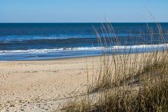 Sandbridge-Strand in Virginia Beach, Virginia mit Strandhafer lizenzfreie stockfotos