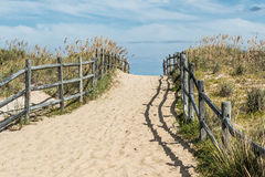 Sandbridge Uphill Beach Pathway Royalty Free Stock Photo