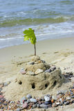 Sandcastle on beach. A view of a small beach sandcastle and a branch with leaves placed at the top Stock Image