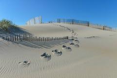 Sanddüne Stockbild