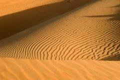 Sanddüne, Abu Dhabi Desert Lizenzfreies Stockbild