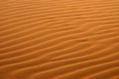 Sanddüne, Abu Dhabi Desert Stockfoto