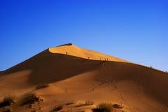 Sanddüne in der Wüste Stockfotografie