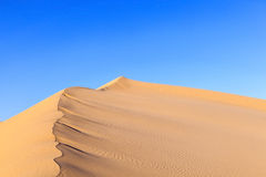 Sanddüne im Sonnenaufgang in der Wüste Lizenzfreie Stockbilder