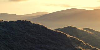 Sanddüne-Landschaft Stockfoto