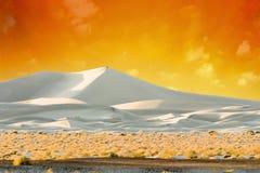 Sanddüne-Lit durch goldenen Sonnenuntergang Stockbilder
