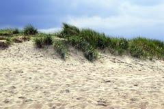 Sanddüne mit Gras an einem windigen Sommertag gegen einen blauen Himmel Lizenzfreies Stockfoto