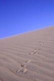 Sanddüne mit Spuren Stockfotos