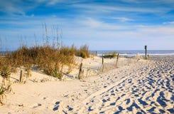 Sanddüne-Seehafer und -abnutzung, die Unsinnigkeits-Strand Sc einzäunen stockbilder