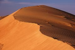 Sanddüne-Wüsten-Landschaft lizenzfreie stockbilder