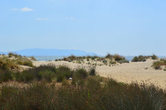 Sanddünen in Ägäischem Meer in Kusadasi, die Türkei Stockbild