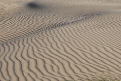 Sanddünen Stockbilder