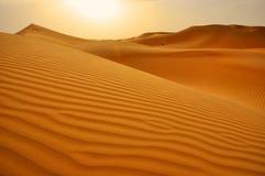 Sanddünen Abu Dhabi Dubai Stockfotos