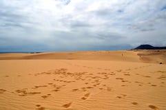 Sanddünen in Corralejo, Fuerteventura lizenzfreie stockfotos