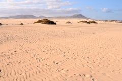Sanddünen in der Wüste stockfotografie