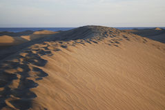 Sanddünen des Maspalomas verlassen nahe dem Atlantik Lizenzfreie Stockfotografie