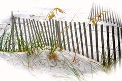 Sanddünen, Gräser u. Fechten bei Santa Rosa Beach, Florida stockbild