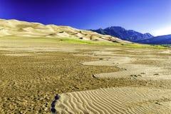 Sanddünen mit Bergen Sangre de Cristo Stockbilder