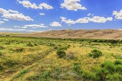 Sanddünen mit Grasland Stockfotografie