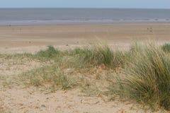 Sanddünen mit Meer Lizenzfreies Stockfoto