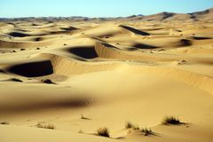 Sanddünen in Sahara Stockbild