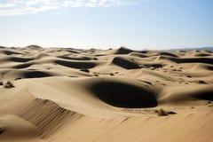 Sanddünen in Sahara Stockbilder