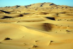 Sanddünen in Sahara Stockfotos