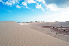 Sanddünen in Stero, 4x4, Exkursion, Aomak-Strandschutzgebiet, Socotrainsel, der Jemen Stockfoto