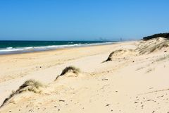 Sanddünen und Brandung setzen auf Süd-Stradbroke-Insel in Queensla auf den Strand lizenzfreies stockbild