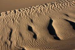 Sanddünen und Kräuselungen Stockfotografie