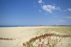 Sanddünen und Vegetation mit Sonnenschein fahren Hintergrund die Küste entlang Lizenzfreies Stockbild