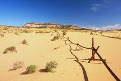 Sanddünen in Utah Stockfotos
