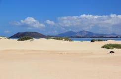 Sanddünen von Corralejo, Fuerteventura, Kanarische Inseln. stockfoto
