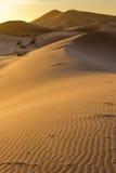 Sanddünen von Marokko stockfotos