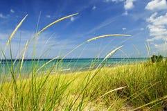 Sanddünen am Strand Stockbild