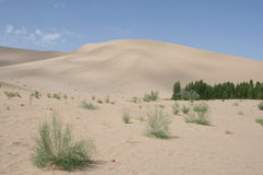 Sanddune de Dunhuang, província de Gansu China Foto de Stock Royalty Free