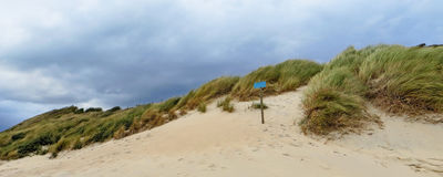 Sanddune in the Netherlands Stock Photo
