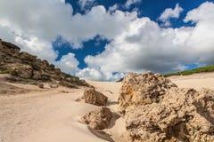 Sanddunes of Bolonia. Andalusia, Spain Stock Photos