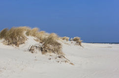 Sanddunes Royalty Free Stock Images