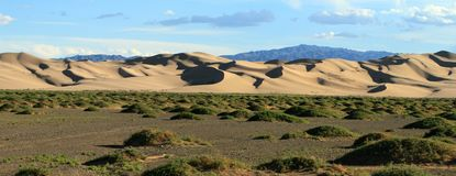 Sanddunes in the Desert Gobi Stock Photography